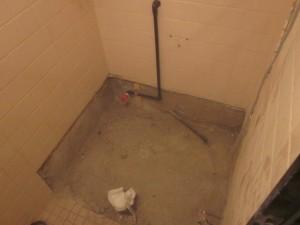 トイレ8 am 2